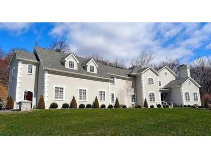 6 Mountain Terrace  Blairstown, NJ MLS# 3288391