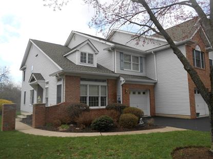 28 Pond Ridge Dr  Clinton Town, NJ MLS# 3292965