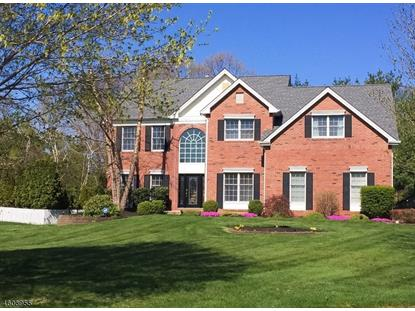 1 Fells Ln  Mount Olive, NJ MLS# 3293117
