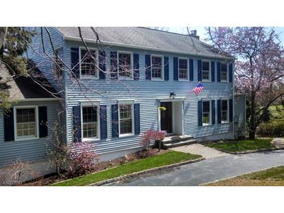 330 Pleasant Hill Rd  Chester, NJ MLS# 3295270
