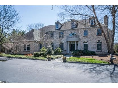 157 Bedens Brook Rd  Montgomery, NJ MLS# 3295817