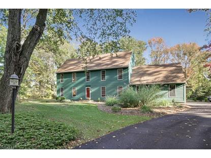 219 Emmans Rd  Roxbury Twp, NJ MLS# 3296657