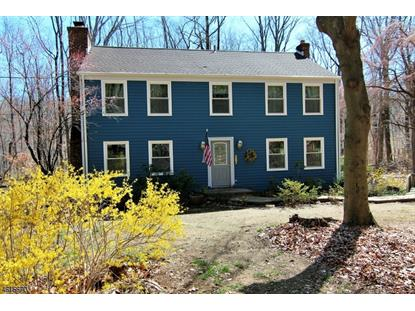 267 Turkey Hill Rd  Bethlehem Twp, NJ MLS# 3297978