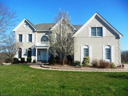 17 Sovereign Dr  Mount Olive, NJ MLS# 3299000