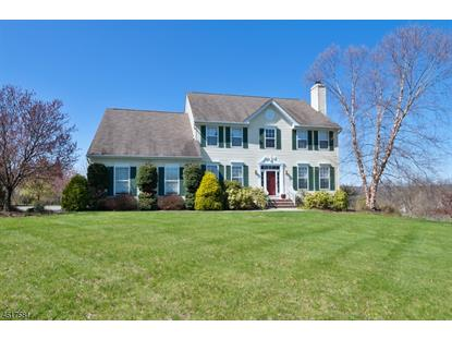19 Terrell Rd  West Amwell, NJ MLS# 3299095