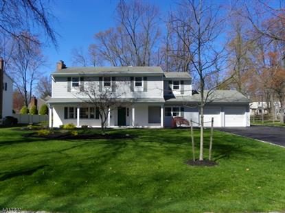 20 RICEMAN RD  Berkeley Heights, NJ MLS# 3299144