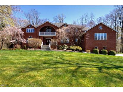 22 High Mountain Dr  Montville Township, NJ MLS# 3300217