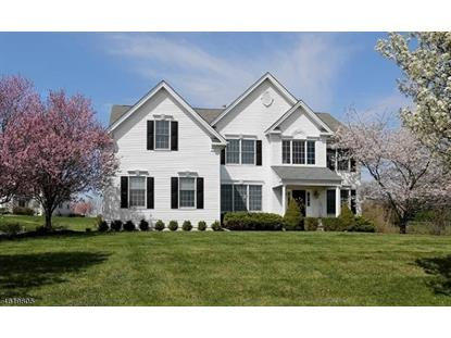 15 Williamson Ln  West Amwell, NJ MLS# 3300554