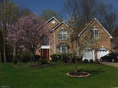 3 Vista Dr  Mount Olive, NJ MLS# 3301602