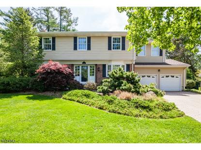16 Harvale Dr  Florham Park, NJ MLS# 3306326
