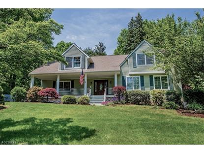 217 Pleasant Hill Rd  Chester, NJ MLS# 3310236