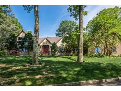 21 Puddingstone Rd  Parsippany-Troy Hills Twp., NJ MLS# 3310816