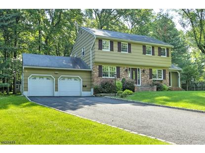 164 Princeton Ave  Berkeley Heights, NJ MLS# 3313665