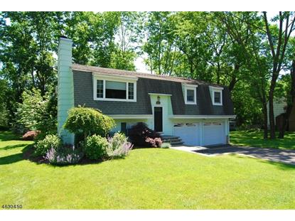 904 E Prospect St  Hackettstown, NJ MLS# 3313848