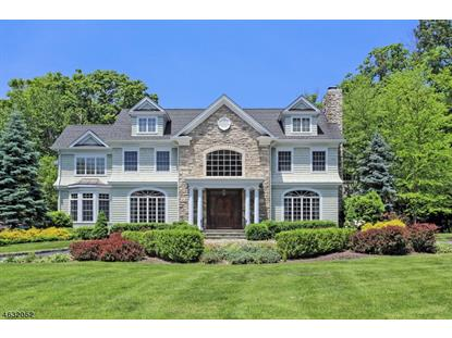 75 Lincoln Ave  Florham Park, NJ MLS# 3316119