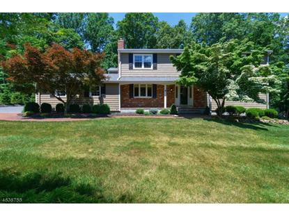 4 Fawn Ln  Martinsville, NJ MLS# 3317256
