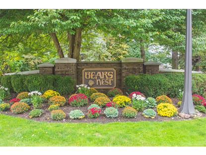 229 Cambridge Oaks  Park Ridge, NJ MLS# 3318056