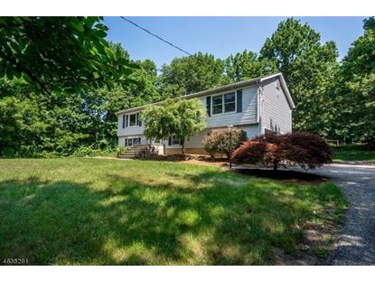11 Upper Hibernia Rd  Rockaway Twp., NJ MLS# 3318676