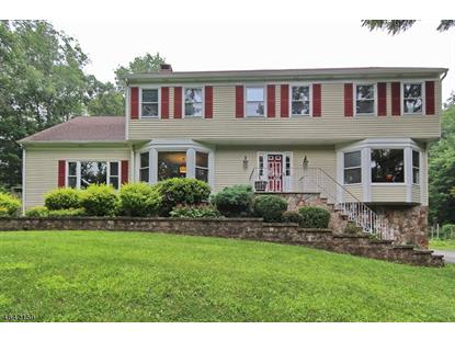 277 Pleasant Hill Rd  Chester, NJ MLS# 3321726