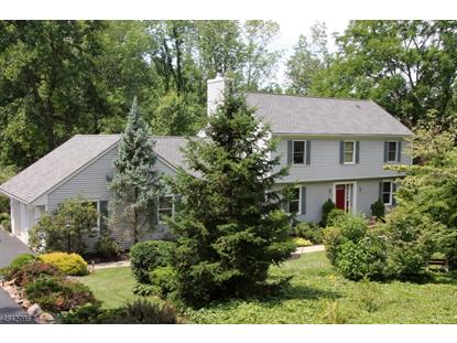100 BUCKHORN DR  White Township, NJ MLS# 3323215