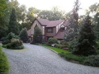 147 Black Brook Rd  Bethlehem Twp, NJ MLS# 3324357