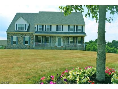 40 Music Mountain Blvd  West Amwell, NJ MLS# 3324513