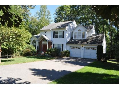 107 Canal Way  Hackettstown, NJ MLS# 3327192