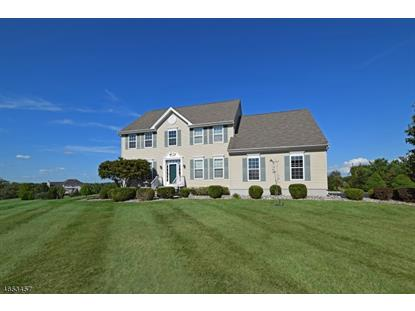6 Melody Drive  West Amwell, NJ MLS# 3333065