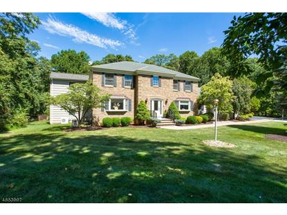 8 SUNNY SLOPE DR  Warren, NJ MLS# 3334307