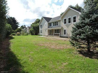 329 Madison Ave  Morris Township, NJ MLS# 3336694