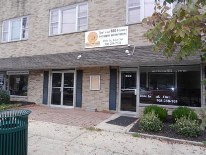 503 PARK AVE  Scotch Plains, NJ 07076 MLS# 3343821