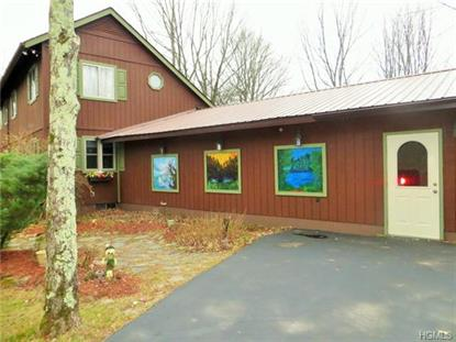 40 Forest Road Woodbourne, NY MLS# 4418649