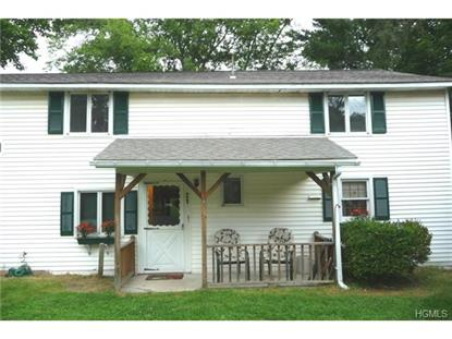 11 On The Green  Verbank, NY MLS# 4423324