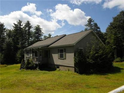 317 Tuthill Road Barryville, NY MLS# 4430829