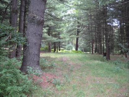 Haring Road Barryville, NY MLS# 4431784