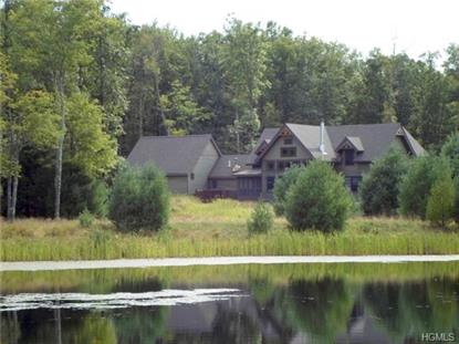 49 Black Bear Court Barryville, NY MLS# 4437771