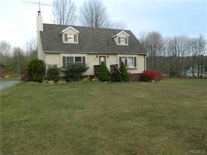 207 Harris Road Harris, NY MLS# 4441099