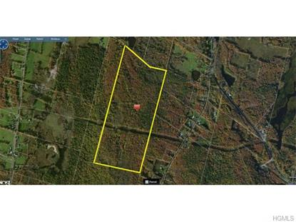 Prince Rd  Hurleyville, NY MLS# 4524931