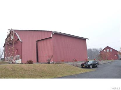 0 Orchard Drive Wallkill, NY MLS# 4543065