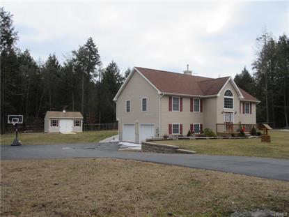 18 Cara Court Hurleyville, NY MLS# 4609325