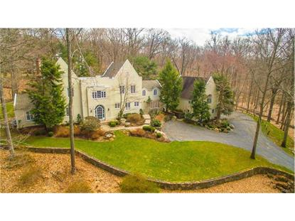 17 Spy Rock Road Pound Ridge, NY MLS# 4613110