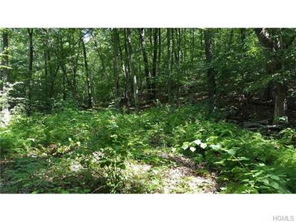 South White Rock Road Holmes, NY MLS# 4633609