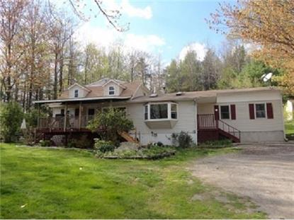 260 TWINS HAVEN Road Grahamsville, NY MLS# 526183