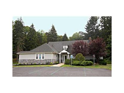 1149 Route 17 M  Chester, NY MLS# 546593