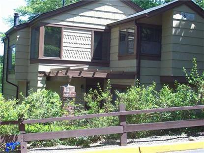 127 Treetop Circle Nanuet, NY MLS# 550232
