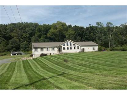 530 Winterton Road Bloomingburg, NY MLS# 552504