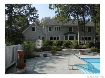 401 Parkertown  LITTLE EGG HARBOR, NJ MLS# 3077737