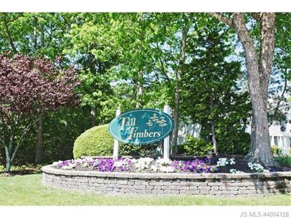 17 Westchester  LITTLE EGG HARBOR, NJ MLS# 4004128