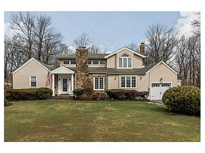 373 MIDDLESEX AVE  Colonia, NJ MLS# 1414313