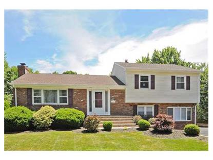 328 SOUTH PLAINFIELD AVE  South Plainfield, NJ MLS# 1418000